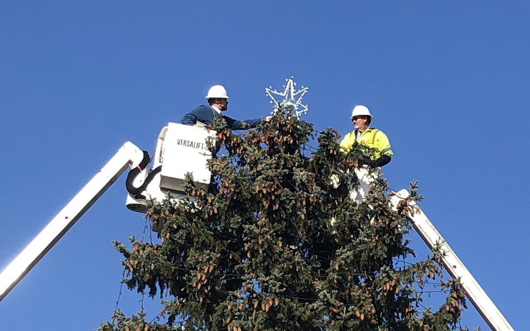 City Manager Helps with Final Touch on Holiday Tree